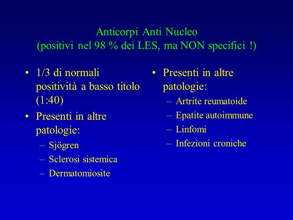 Anticorpi Anti Nucleo (positivi nel 98 % dei LES, ma NON specifici !) 1/3 di normali positività a basso titolo (1:40) Presenti in altre patologie: –Sjögren –Sclerosi sistemica –Dermatomiosite Presenti in altre patologie: –Artrite reumatoide –Epatite autoimmune –Linfomi –Infezioni croniche