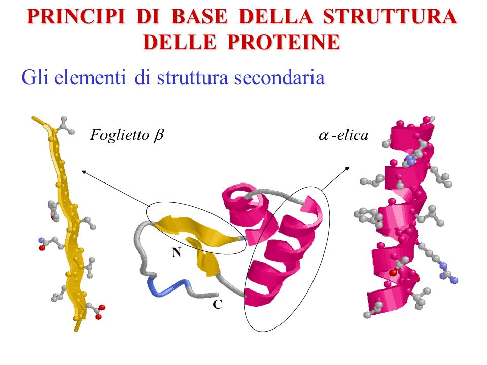 Protein set Training set 1 Testing set 1 The cross validation procedure