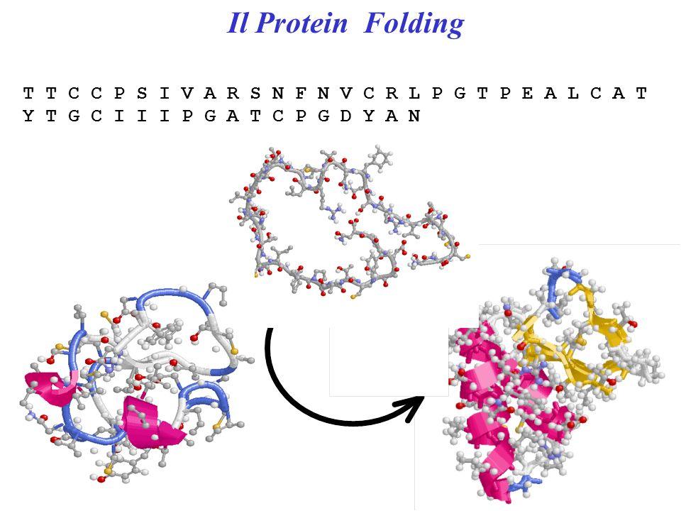 I legami a zolfo tra cisteine nelle proteine 2-SH -> -SS- + 2H + + 2e - S-S distance 2.2 Å Torsion angle C-S-S-C 90° Bond Energy 3 Kcal/mol S S C C C C