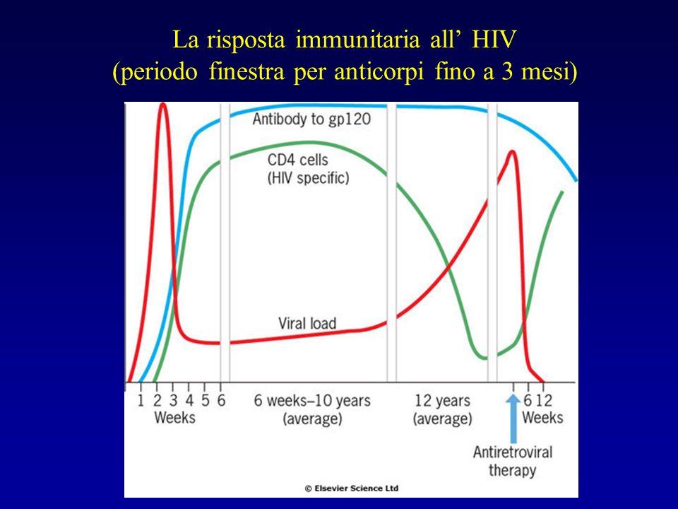 La risposta immunitaria all HIV (periodo finestra per anticorpi fino a 3 mesi)