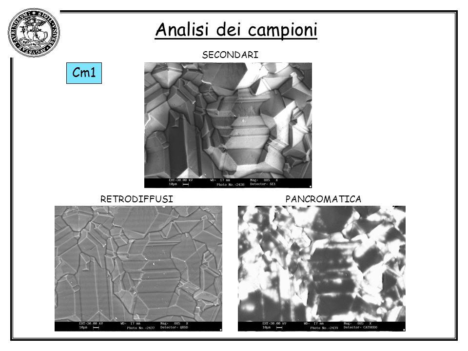 Analisi dei campioni Cm1 SECONDARI PANCROMATICARETRODIFFUSI