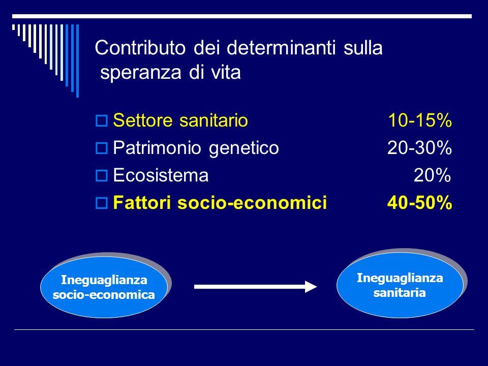 Contributo dei determinanti sulla speranza di vita Settore sanitario10-15% Patrimonio genetico20-30% Ecosistema 20% Fattori socio-economici 40-50% Ineguaglianza socio-economica Ineguaglianza socio-economica Ineguaglianza sanitaria Ineguaglianza sanitaria