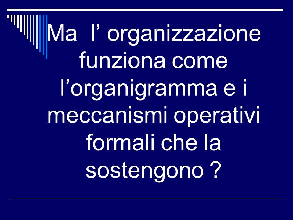 Ma l organizzazione funziona come lorganigramma e i meccanismi operativi formali che la sostengono ?