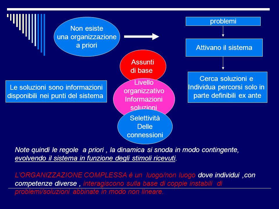 Non esiste una organizzazione a priori problemi Attivano il sistema Cerca soluzioni e Individua percorsi solo in parte definibili ex ante Le soluzioni