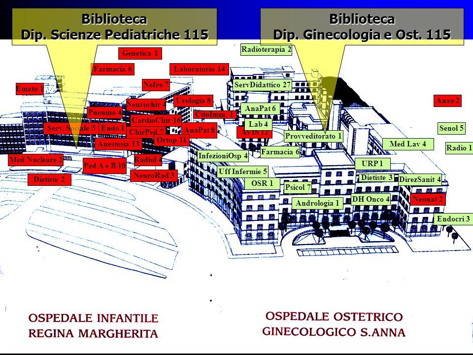 Nuove prospettive della biblioteca biomedica Valentina Comba Convegno: 21 giugno 2000 Come cambia la biblioteca in ospedale Azienda Sanitaria Ospedaliera OIRM S.Anna Universita degli Studi di Torino