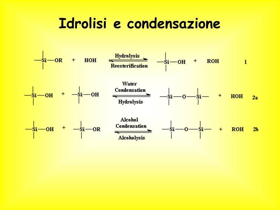 Idrolisi e condensazione