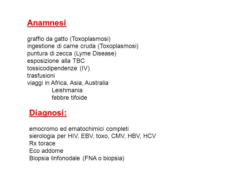 Anamnesi graffio da gatto (Toxoplasmosi) ingestione di carne cruda (Toxoplasmosi) puntura di zecca (Lyme Disease) esposizione alla TBC tossicodipenden