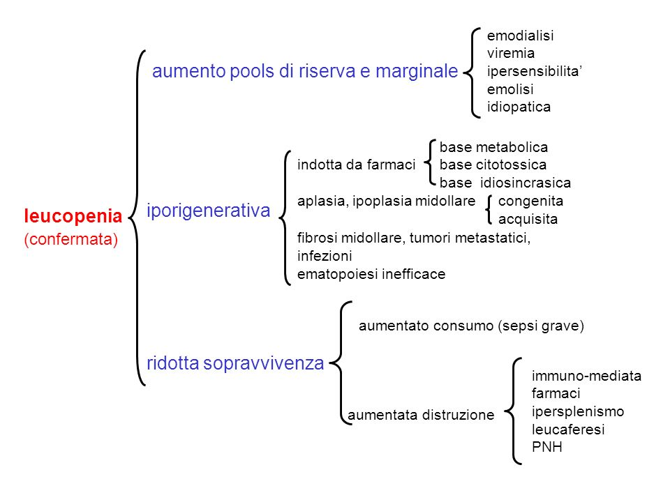iporigenerativa ridotta sopravvivenza leucopenia (confermata) aumentato consumo (sepsi grave) aumentata distruzione immuno-mediata farmaci ipersplenis