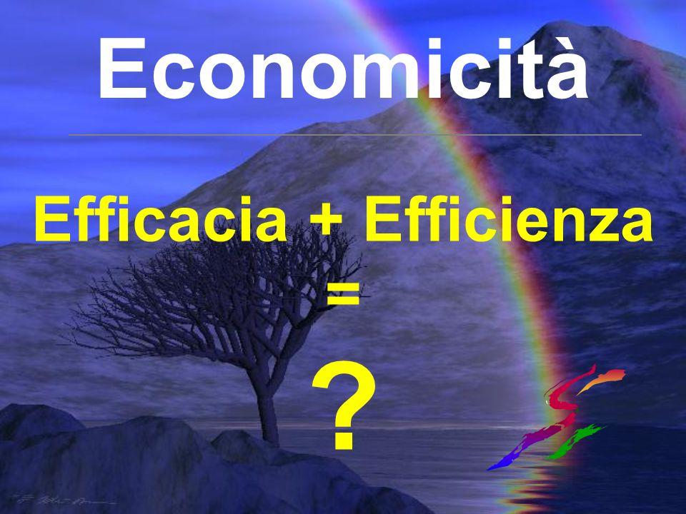 Efficacia + Efficienza = ?