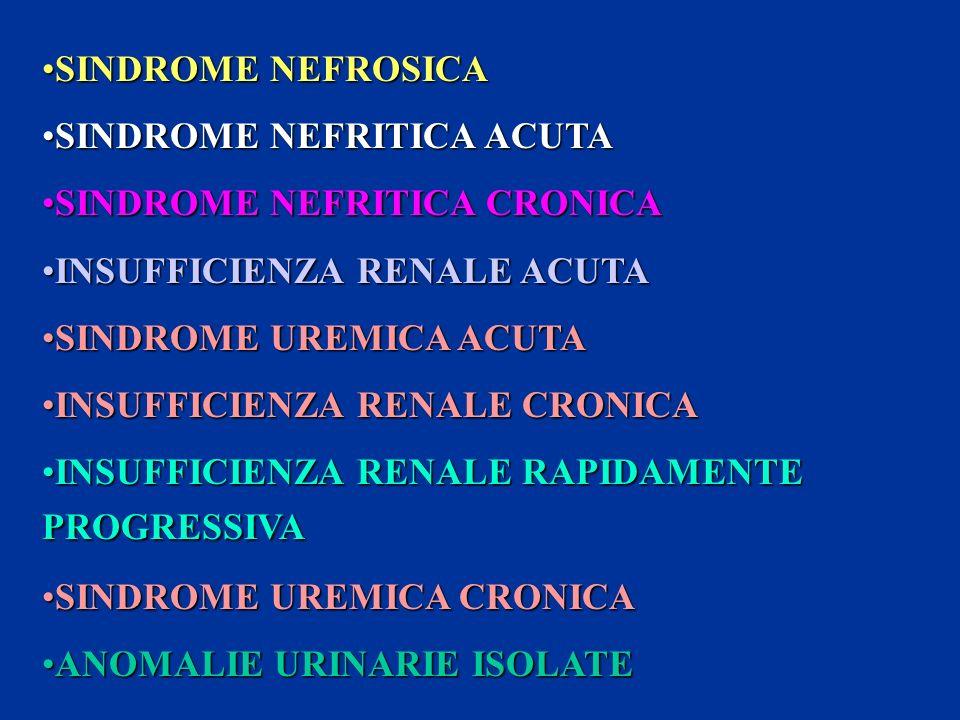 SINDROME NEFROSICASINDROME NEFROSICA SINDROME NEFRITICA ACUTASINDROME NEFRITICA ACUTA SINDROME NEFRITICA CRONICASINDROME NEFRITICA CRONICA INSUFFICIEN