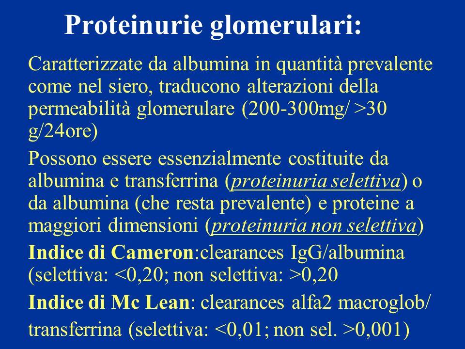 Proteinurie glomerulari: Caratterizzate da albumina in quantità prevalente come nel siero, traducono alterazioni della permeabilità glomerulare (200-3