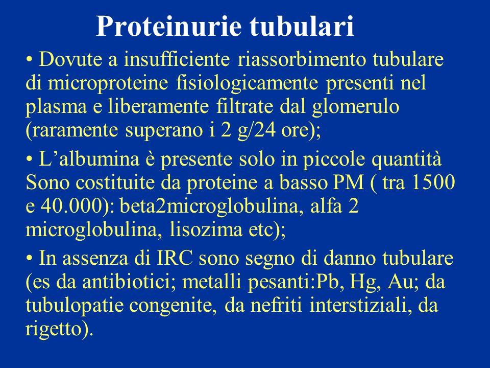 Proteinurie tubulari Dovute a insufficiente riassorbimento tubulare di microproteine fisiologicamente presenti nel plasma e liberamente filtrate dal g