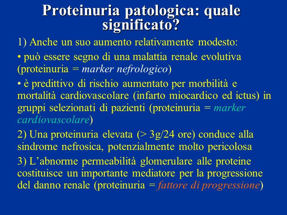 Proteinuria patologica: quale significato? 1) Anche un suo aumento relativamente modesto: può essere segno di una malattia renale evolutiva (proteinur