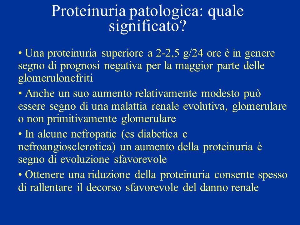 Proteinuria patologica: quale significato? Una proteinuria superiore a 2-2,5 g/24 ore è in genere segno di prognosi negativa per la maggior parte dell
