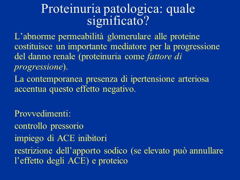 Proteinuria patologica: quale significato? Labnorme permeabilità glomerulare alle proteine costituisce un importante mediatore per la progressione del