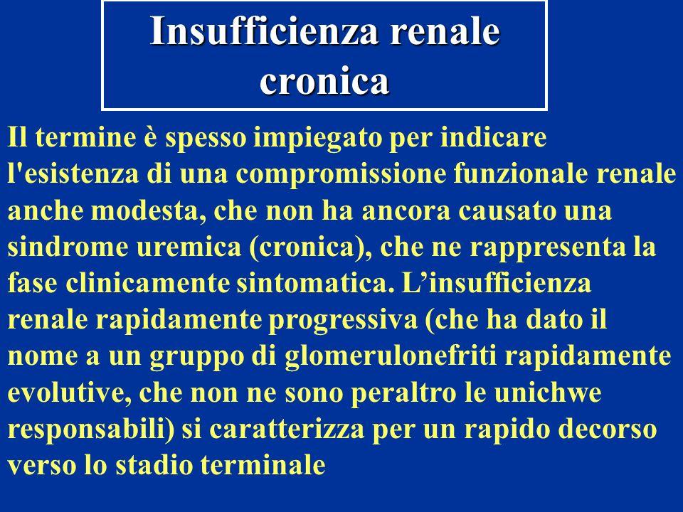 Insufficienza renale cronica Il termine è spesso impiegato per indicare l'esistenza di una compromissione funzionale renale anche modesta, che non ha