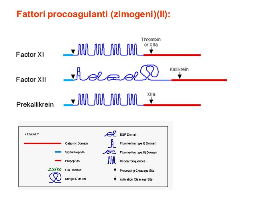 Fattori procoagulanti (zimogeni)(II):