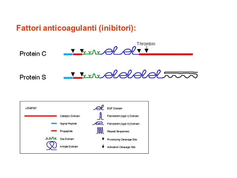 Fattori anticoagulanti (inibitori):