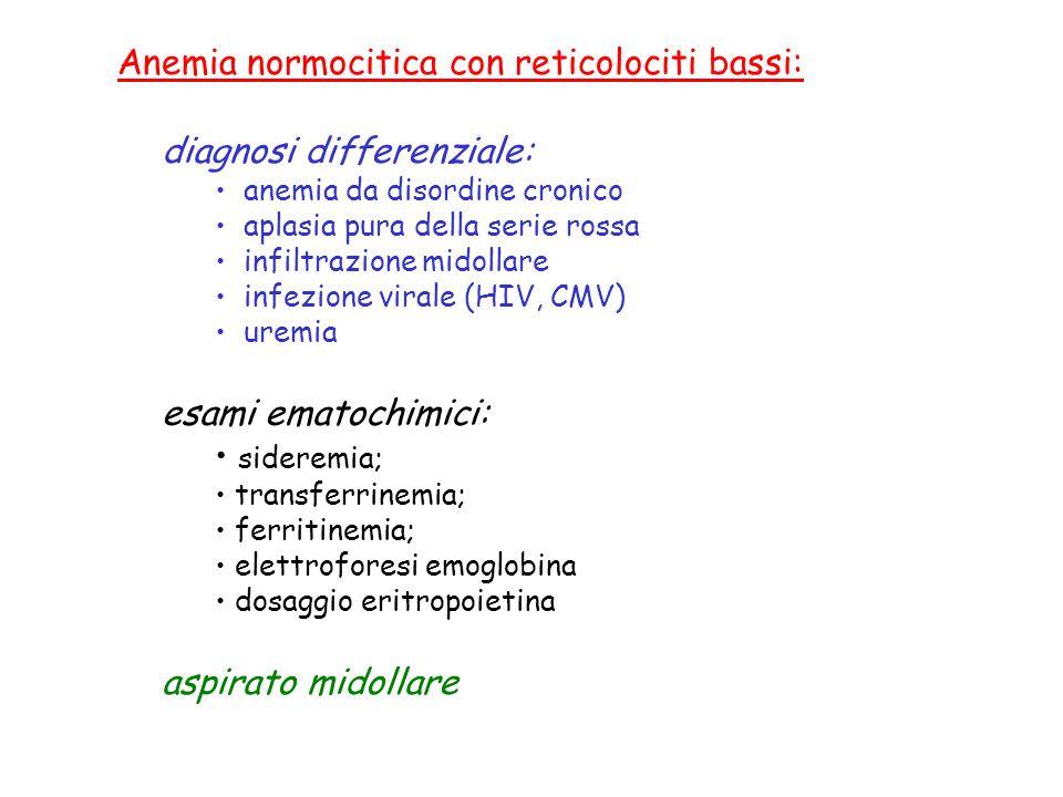 esami ematochimici: acido folico; vitamina B12; HYS/MMA; diagnosi differenziale: anemia da carenza di B12 anemia da carenza di folati sindrome mielodisplastica anemia da farmaci insufficienza epatica ipotiroidismo aspirato midollare Anemia macrocitica con reticolociti bassi:
