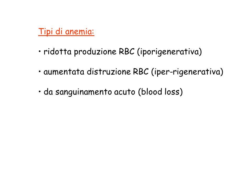 Diagnosi di anemia: reticolociti MCV morfologia (striscio periferico) dosaggi ematochimici aspirato midollare
