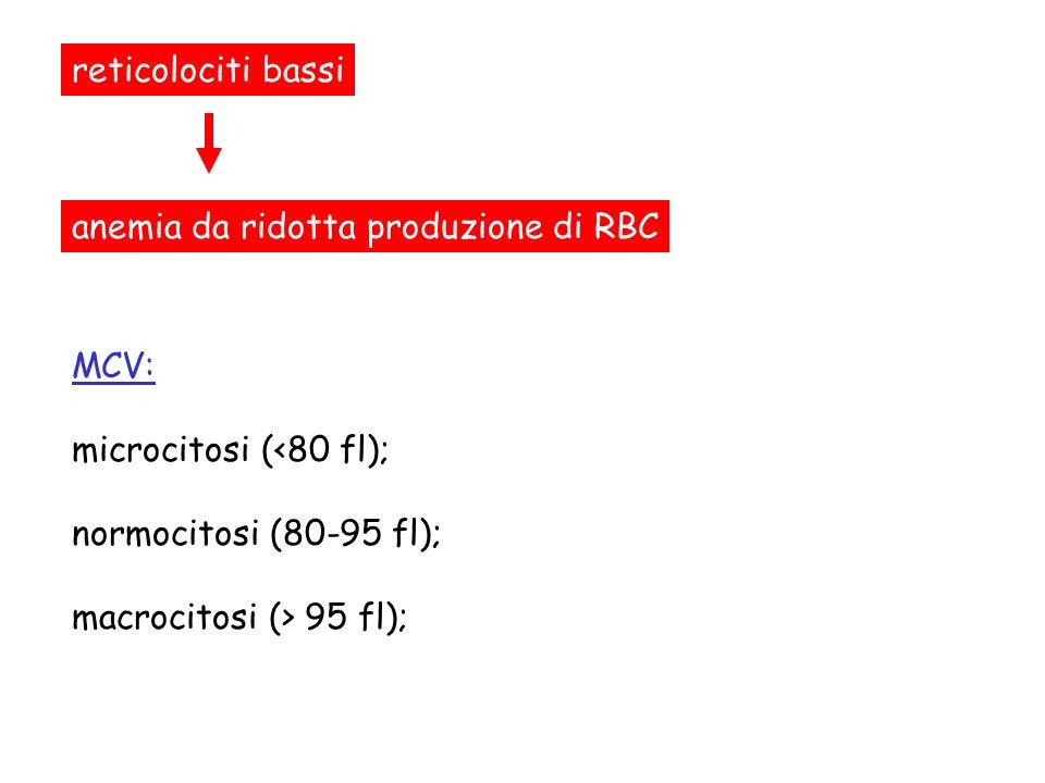 ipercromiciipocromicimacrocitosimicrocitosi