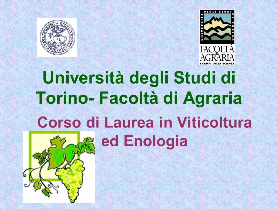 Università degli Studi di Torino- Facoltà di Agraria Corso di Laurea in Viticoltura ed Enologia