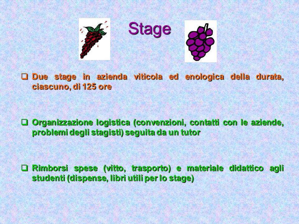 Stage Due stage in azienda viticola ed enologica della durata, ciascuno, di 125 ore Due stage in azienda viticola ed enologica della durata, ciascuno,