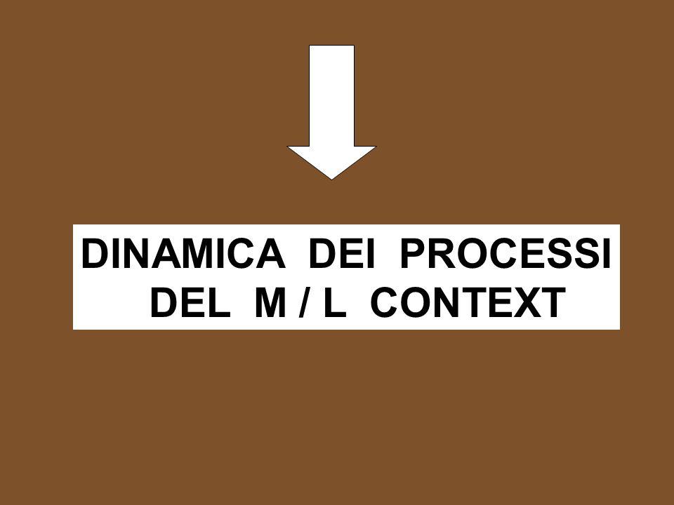 DINAMICA DEI PROCESSI DEL M / L CONTEXT