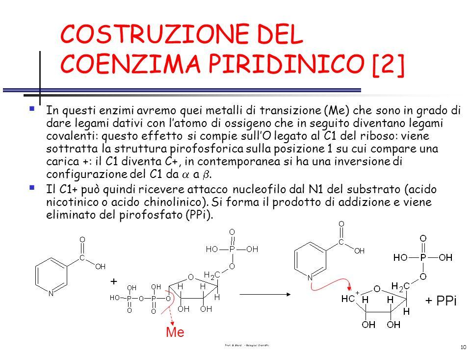 Prof. G. Gilardi - Biological Chemistry 10 COSTRUZIONE DEL COENZIMA PIRIDINICO [2] In questi enzimi avremo quei metalli di transizione (Me) che sono i