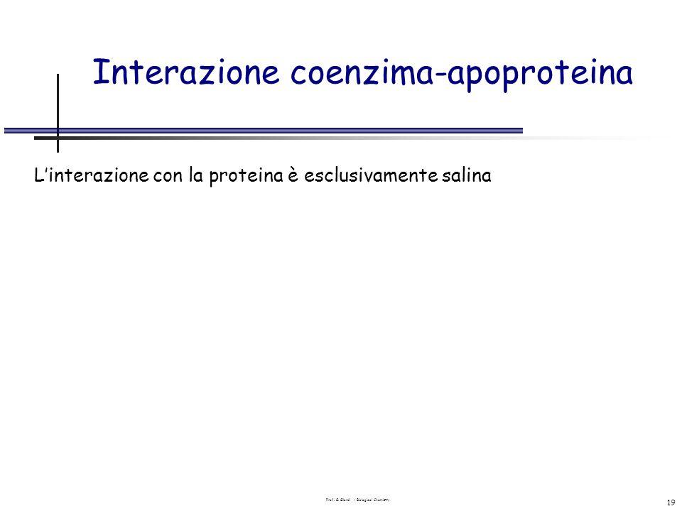 Prof. G. Gilardi - Biological Chemistry 19 Interazione coenzima-apoproteina Linterazione con la proteina è esclusivamente salina