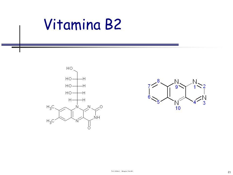 Prof. G. Gilardi - Biological Chemistry 21 Vitamina B2