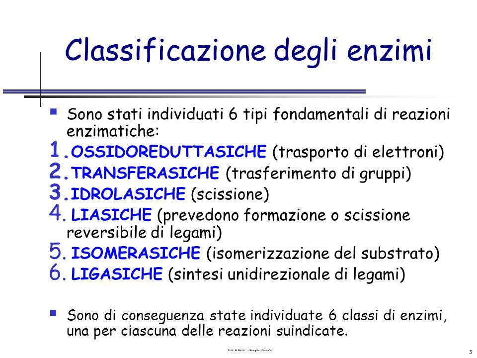 Prof. G. Gilardi - Biological Chemistry 3 Classificazione degli enzimi Sono stati individuati 6 tipi fondamentali di reazioni enzimatiche: 1. OSSIDORE