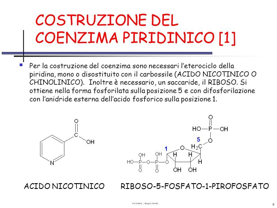 Prof. G. Gilardi - Biological Chemistry 9 COSTRUZIONE DEL COENZIMA PIRIDINICO [1] Per la costruzione del coenzima sono necessari leterociclo della pir