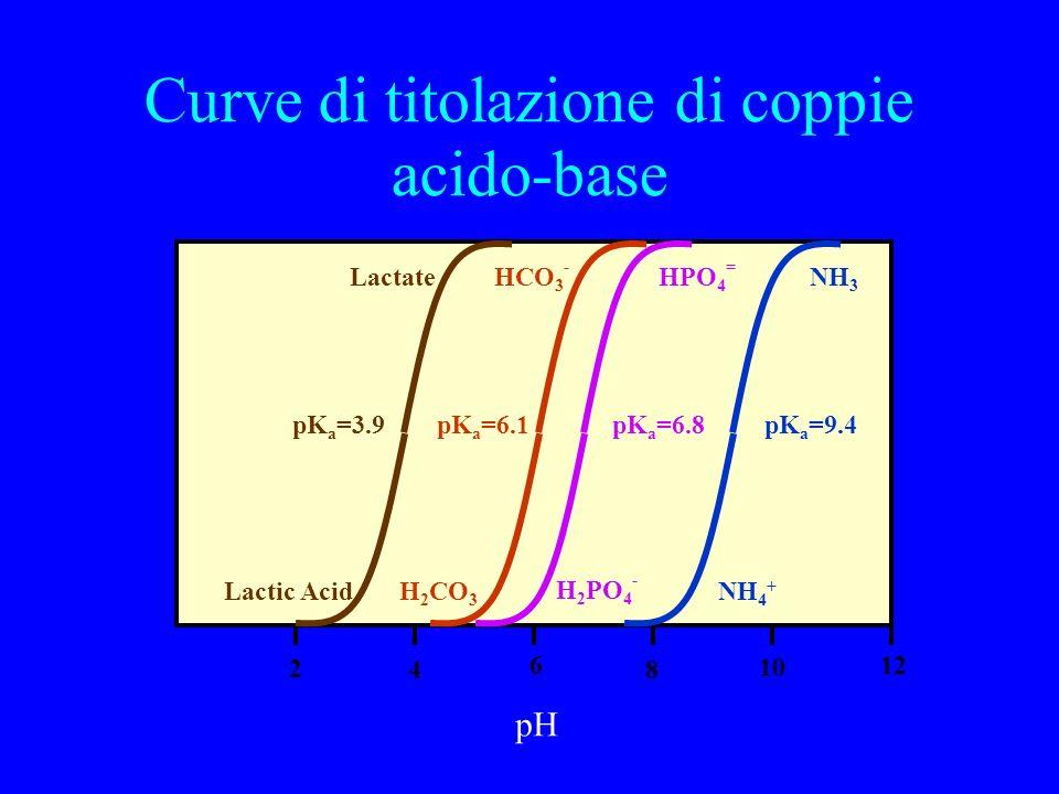 Curve di titolazione di coppie acido-base 12 8 6 4 2 10 pH NH 4 + pK a =9.4 H 2 PO 4 - pK a =6.8 NH 3 HPO 4 = HCO 3 - H 2 CO 3 pK a =6.1 Lactic Acid Lactate pK a =3.9