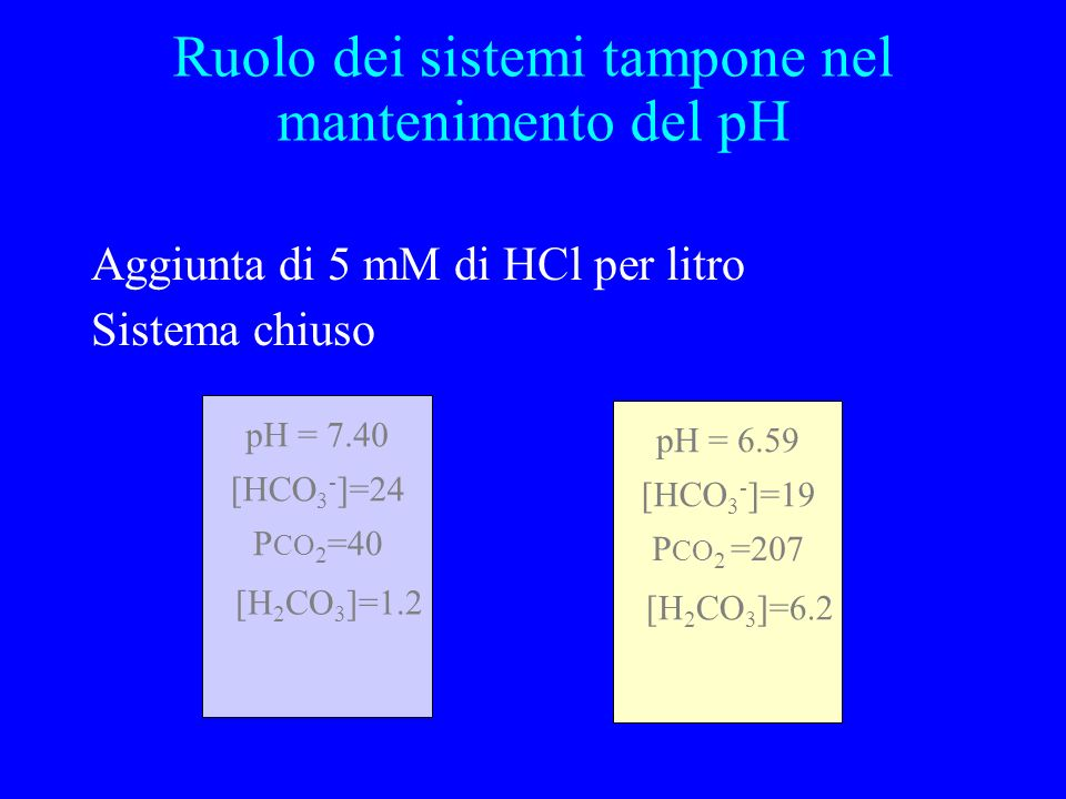 Aggiunta di 5 mM di HCl per litro Sistema chiuso pH = 7.40 P CO 2 =40 [HCO 3 - ]=24 [H 2 CO 3 ]=1.2 pH = 6.59 P CO 2 =207 [HCO 3 - ]=19 [H 2 CO 3 ]=6.