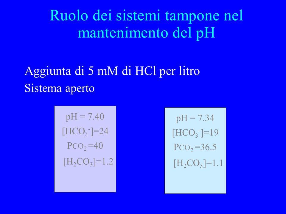 Aggiunta di 5 mM di HCl per litro Sistema aperto pH = 7.40 P CO 2 =40 [HCO 3 - ]=24 [H 2 CO 3 ]=1.2 pH = 7.34 P CO 2 =36.5 [HCO 3 - ]=19 [H 2 CO 3 ]=1
