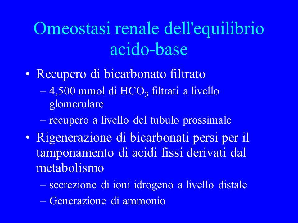 Omeostasi renale dell equilibrio acido-base Recupero di bicarbonato filtrato –4,500 mmol di HCO 3 filtrati a livello glomerulare –recupero a livello del tubulo prossimale Rigenerazione di bicarbonati persi per il tamponamento di acidi fissi derivati dal metabolismo –secrezione di ioni idrogeno a livello distale –Generazione di ammonio