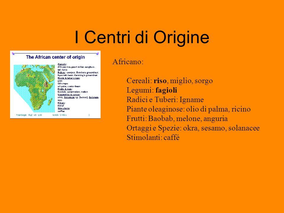 I Centri di Origine Africano: Cereali: riso, miglio, sorgo Legumi: fagioli Radici e Tuberi: Igname Piante oleaginose: olio di palma, ricino Frutti: Ba
