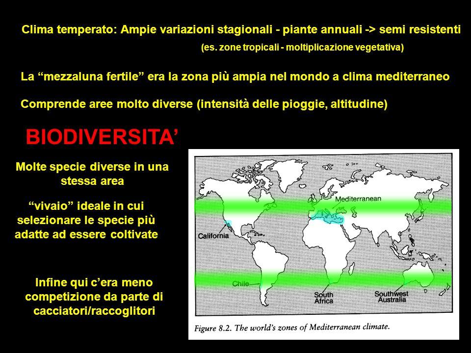 Clima temperato: Ampie variazioni stagionali - piante annuali -> semi resistenti (es. zone tropicali - moltiplicazione vegetativa) La mezzaluna fertil