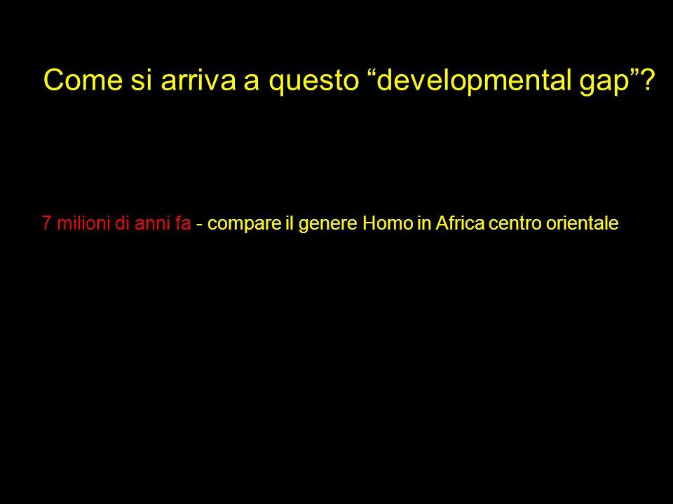 Come si arriva a questo developmental gap? 7 milioni di anni fa - compare il genere Homo in Africa centro orientale