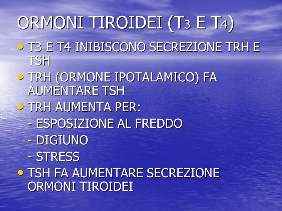 ORMONI TIROIDEI (T 3 E T 4 ) T3 E T4 INIBISCONO SECREZIONE TRH E TSH T3 E T4 INIBISCONO SECREZIONE TRH E TSH TRH (ORMONE IPOTALAMICO) FA AUMENTARE TSH