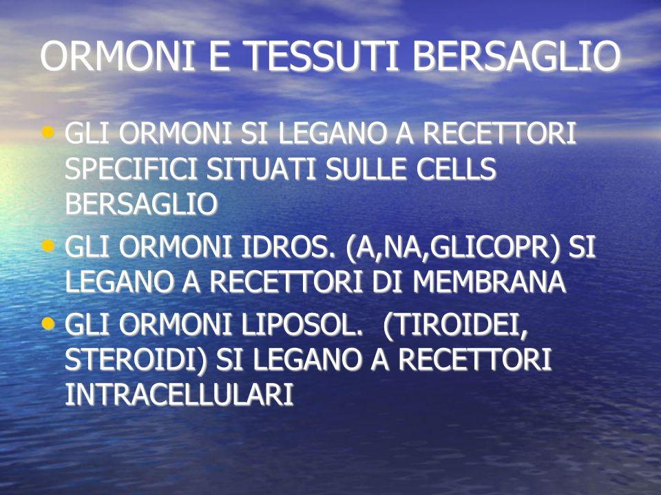 ORMONI E TESSUTI BERSAGLIO GLI ORMONI SI LEGANO A RECETTORI SPECIFICI SITUATI SULLE CELLS BERSAGLIO GLI ORMONI SI LEGANO A RECETTORI SPECIFICI SITUATI SULLE CELLS BERSAGLIO GLI ORMONI IDROS.