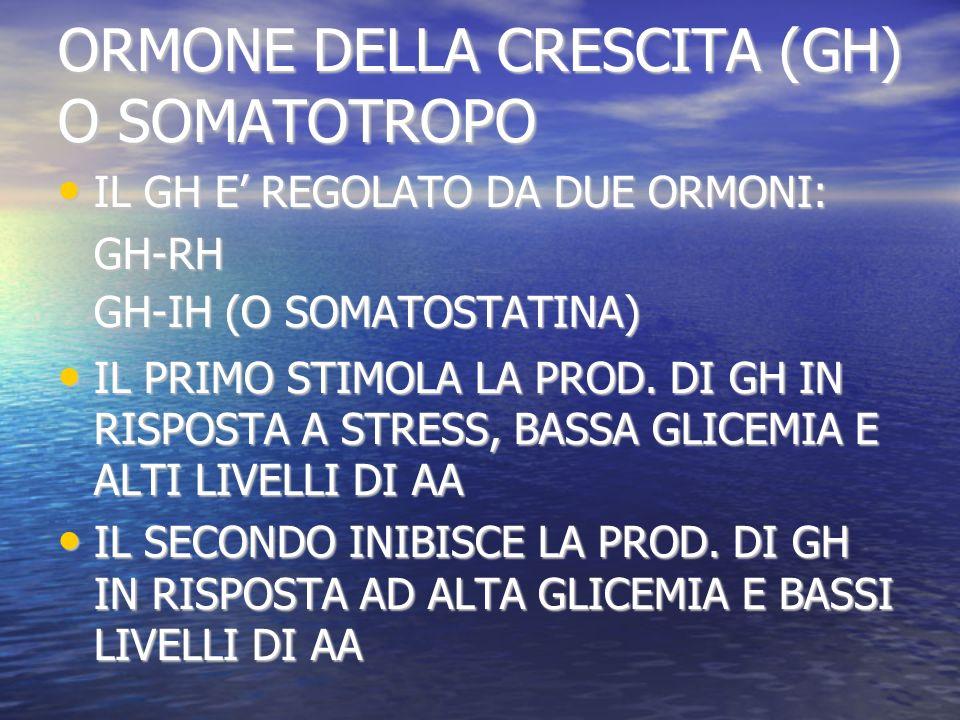 ORMONE DELLA CRESCITA (GH) O SOMATOTROPO IL GH E REGOLATO DA DUE ORMONI: IL GH E REGOLATO DA DUE ORMONI:GH-RH GH-IH (O SOMATOSTATINA) IL PRIMO STIMOLA LA PROD.