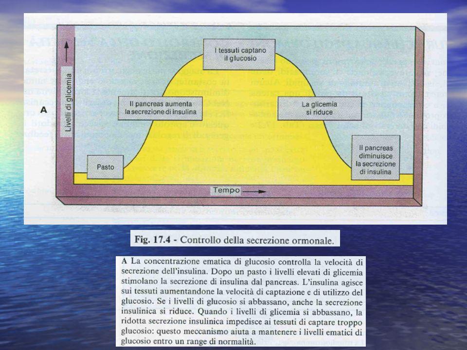 ACTH E SOST.CORRELATE LIPOTROPINE: LIPOTROPINE: - LEGANO REC.