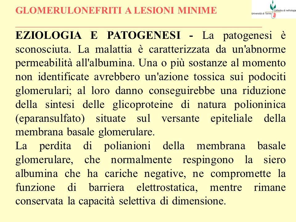 GLOMERULONEFRITI A LESIONI MINIME __________________________________________________ ANATOMIA PATOLOGICA - Alla MO i glomeruli appaiono normali o mostrano, al più, un modesto aumento del numero delle cellule mesangiali o della matrice.