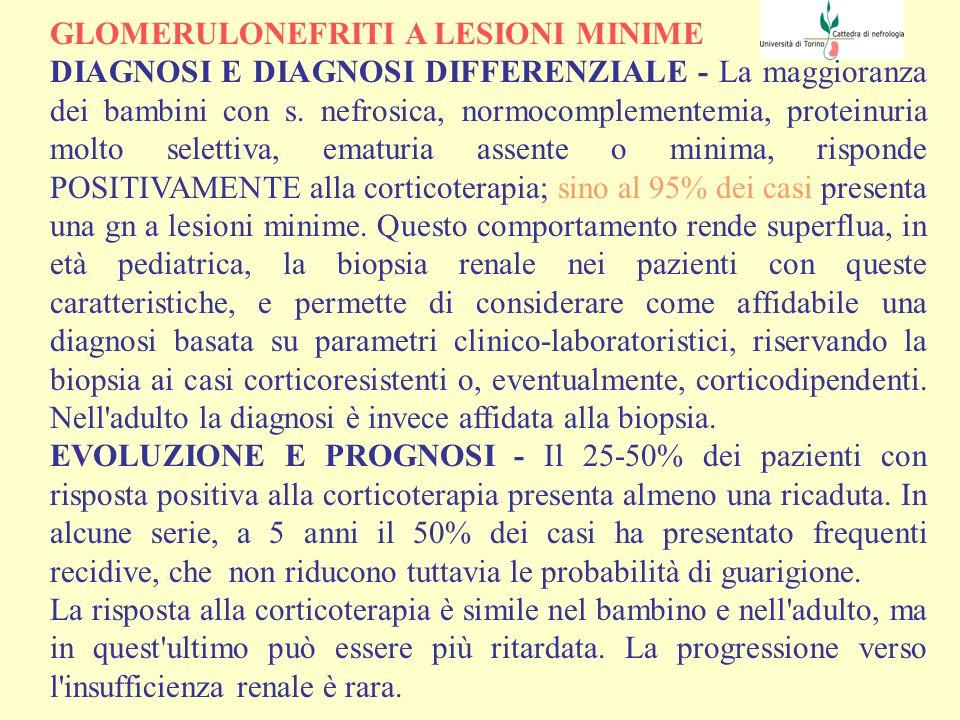 GLOMERULONEFRITI A LESIONI MINIME INDIRIZZI DI TERAPIA - La maggior parte degli schemi ha in comune l impiego dei corticosteroidi come farmaci di prima scelta, con dosi di 1 mg/kg/die di prednisone per l adulto (50-80 mg/die) e di 1-2 mg/kg/die (o 60 mg/m 2 /die) per i bambini.