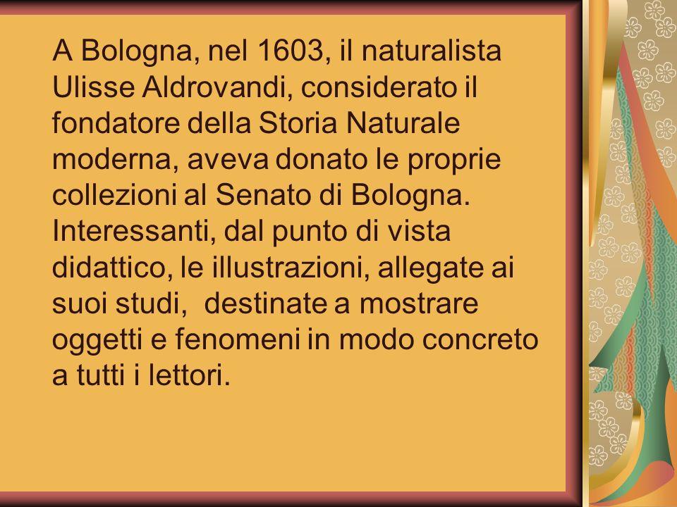 A Bologna, nel 1603, il naturalista Ulisse Aldrovandi, considerato il fondatore della Storia Naturale moderna, aveva donato le proprie collezioni al S