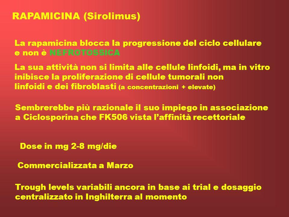 APC Costimolazione Stimolo antigenico TCR Ca2+ Calcineurina attivata NFAT P Interleukin-2 gene promoter Interleuchina 2 Recettore interleuchina 2 Cicl