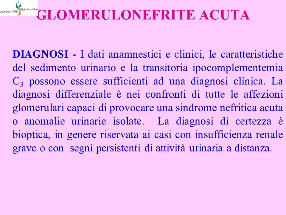 GLOMERULONEFRITE ACUTA DIAGNOSI - I dati anamnestici e clinici, le caratteristiche del sedimento urinario e la transitoria ipocomplementemia C 3 possono essere sufficienti ad una diagnosi clinica.