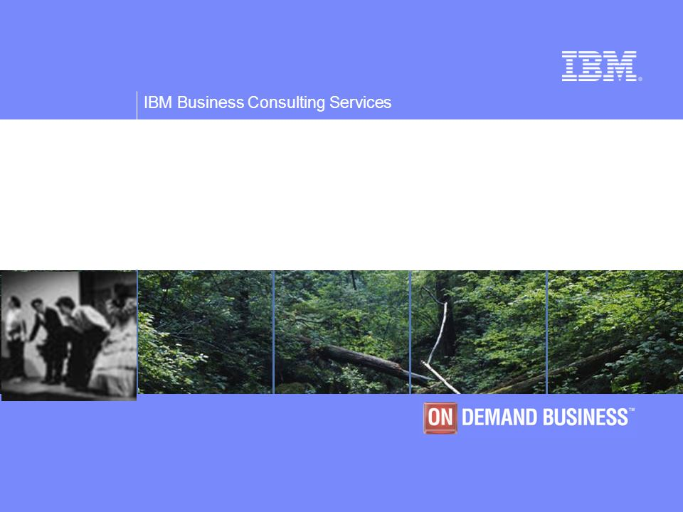 © Copyright IBM Corporation 2005 IBM Business Consulting Services 29..... e richiede lutilizzo di numerose e specifiche competenze da integrare e indi